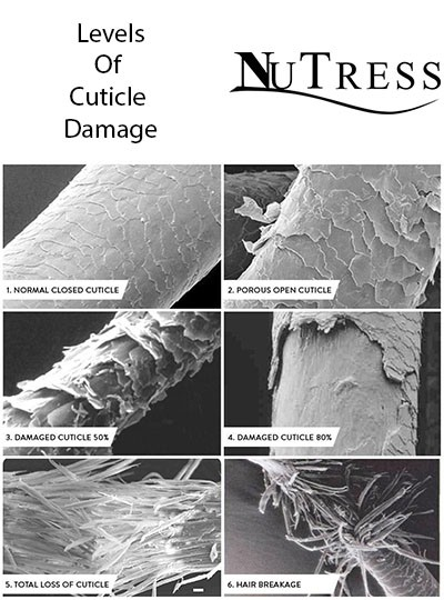 6 stages of cuticle damage from healthy to severely damaged under a microscope