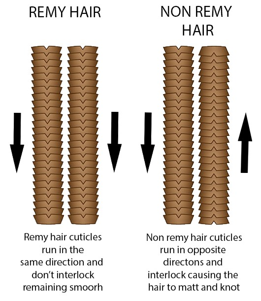 diagram to demonstrate the different directions of remy and non remy hair